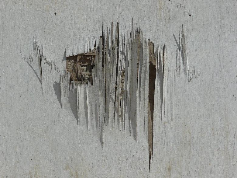 wood_damaged_0014_01.jpg