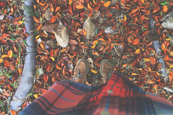 Changing Seasons, Autumn Equinox, and Other Musings