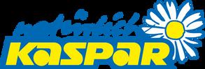 Logo_Kaspar.png