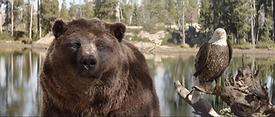 Kia The Bear & The Eagle Screenshot 3.pn