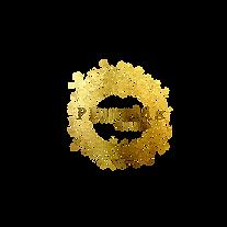 Logo Plumetis.png
