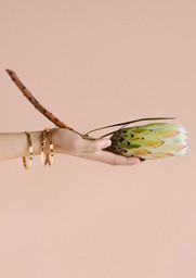 Virgile bracelet Mulotb