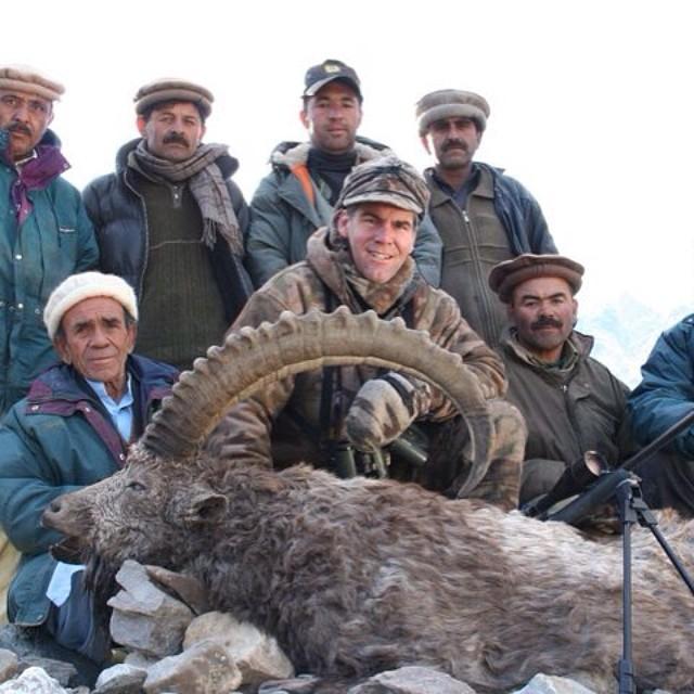 Himalayan Ibex, northern Pakistan