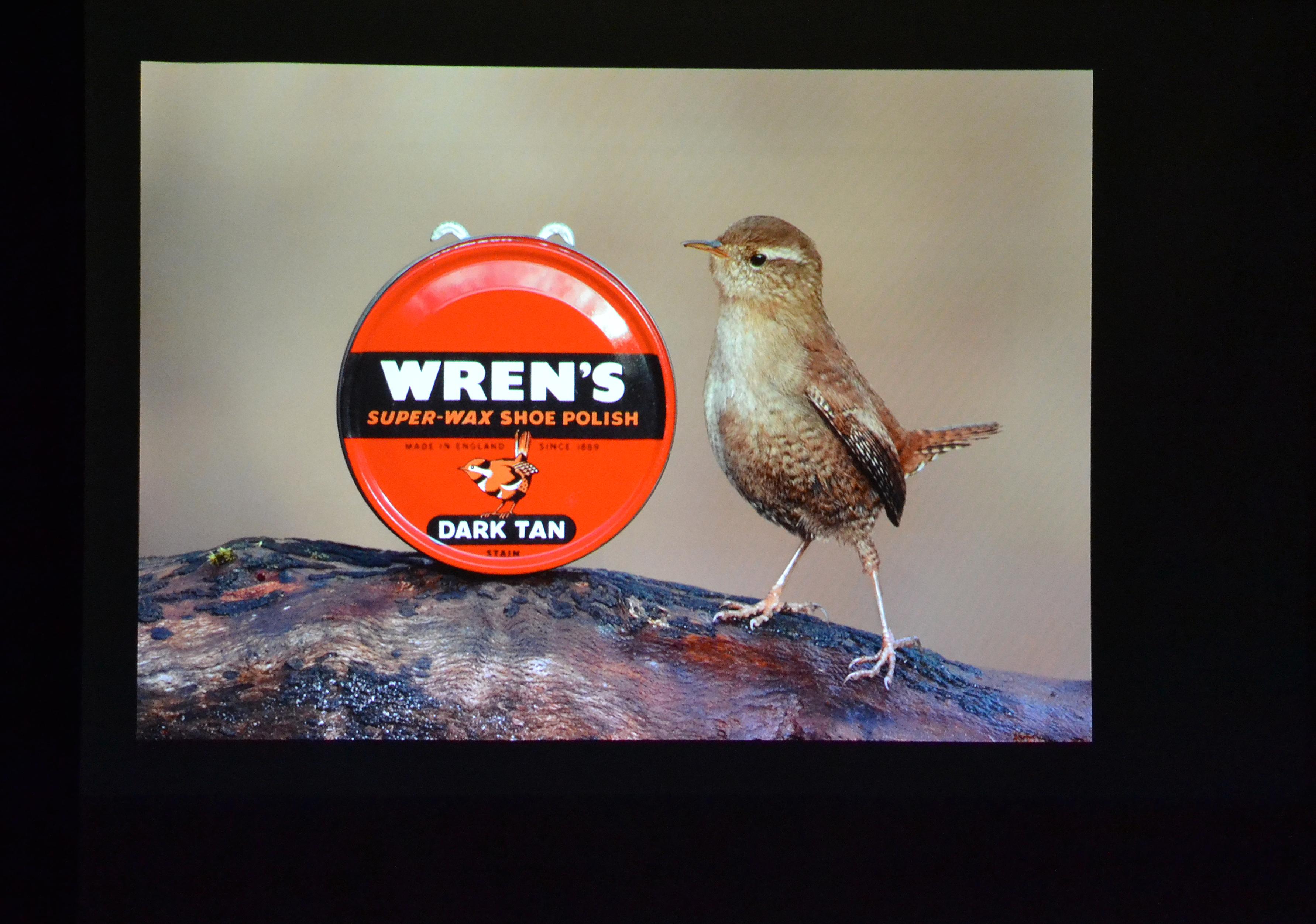 Wren with Wren shoe polish.