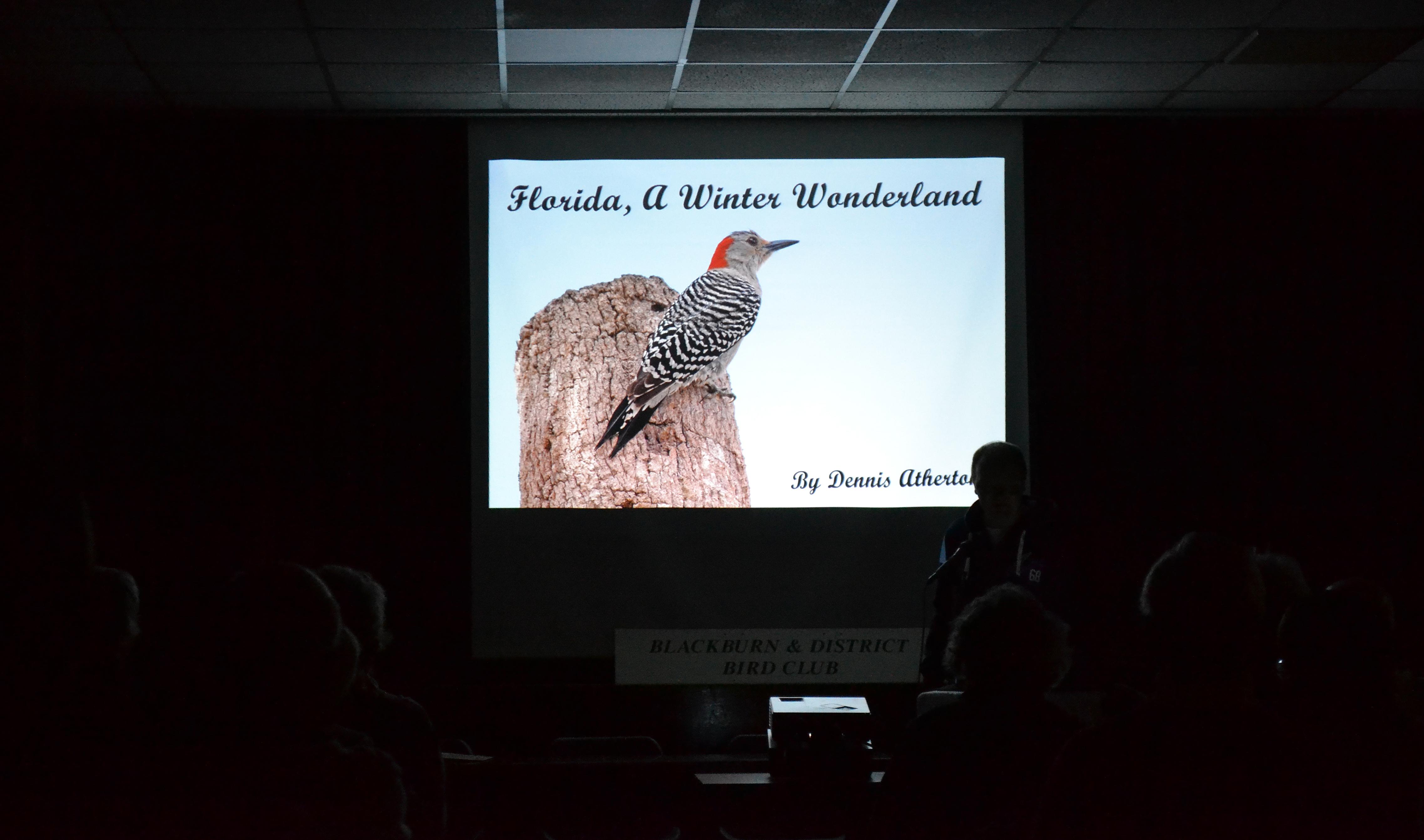 Florida A Winter Wonderland