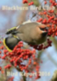 2016 Bird Report