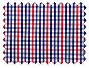 Red-Blue-Check-Shirt-1.jpg