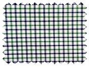 Green-Check-Shirt-1.jpg