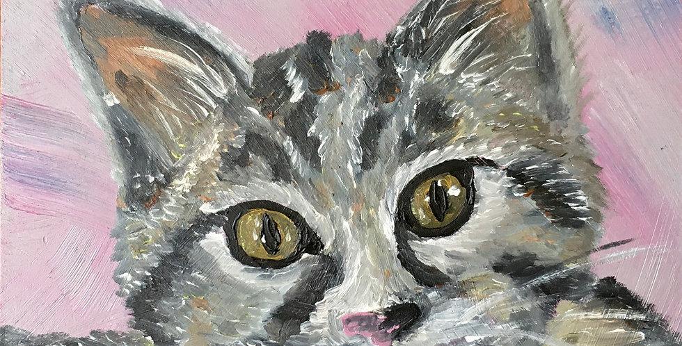 "Tabby Cat, 6""x6"""