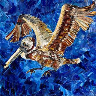 """Brown Pelican, 12""""x12"""""""