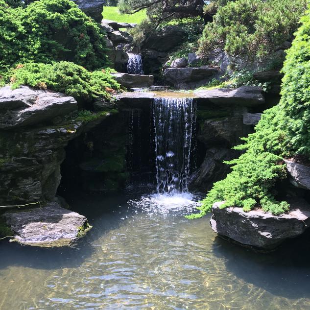 Brooklyn Botanic Garden, Brooklyn, NY
