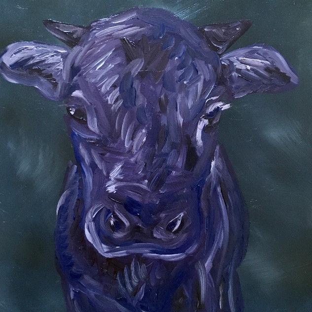 "Purple Cow, 6""x6"""