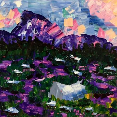 "Meadow Sunset, 12""x12"""