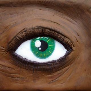 Eye, 2010