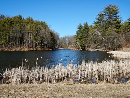 Chicopee Reservoir, Chicopee