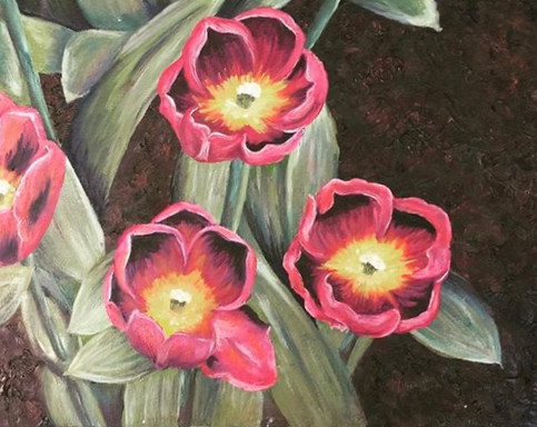 Keukenhoff Tulips
