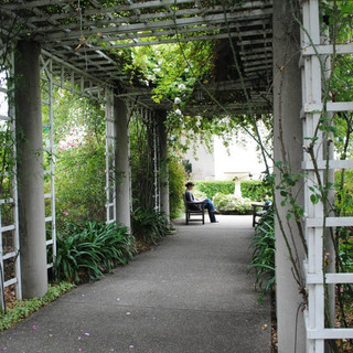 Hunington Library, Museum and Gardens, Pasadena, CA