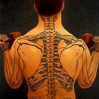 Weight of Anatomy on Human Society, 2010