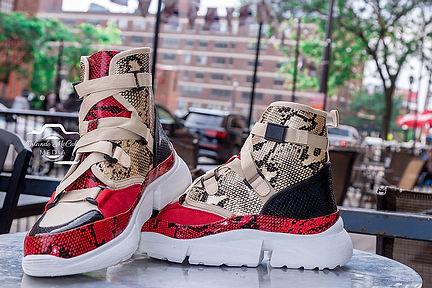 shoes 2.jpeg
