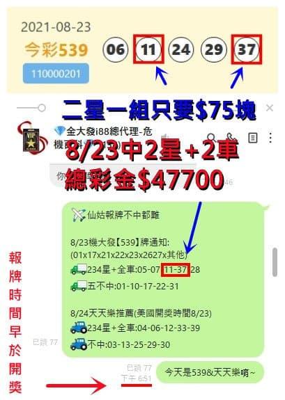 539報明牌群組