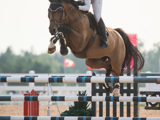 Rachel Schnurr and Prince Garbo win $25,000 RAM Equestrian Grand Prix at CEP Summer Classic