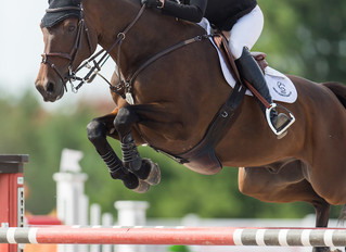 Amy Millar and Truman win 2019 Caledon Cup at Canadian Show Jumping Tournament
