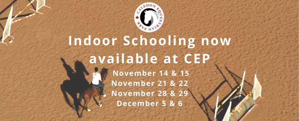 wix banner-Indoor schooling available.pn