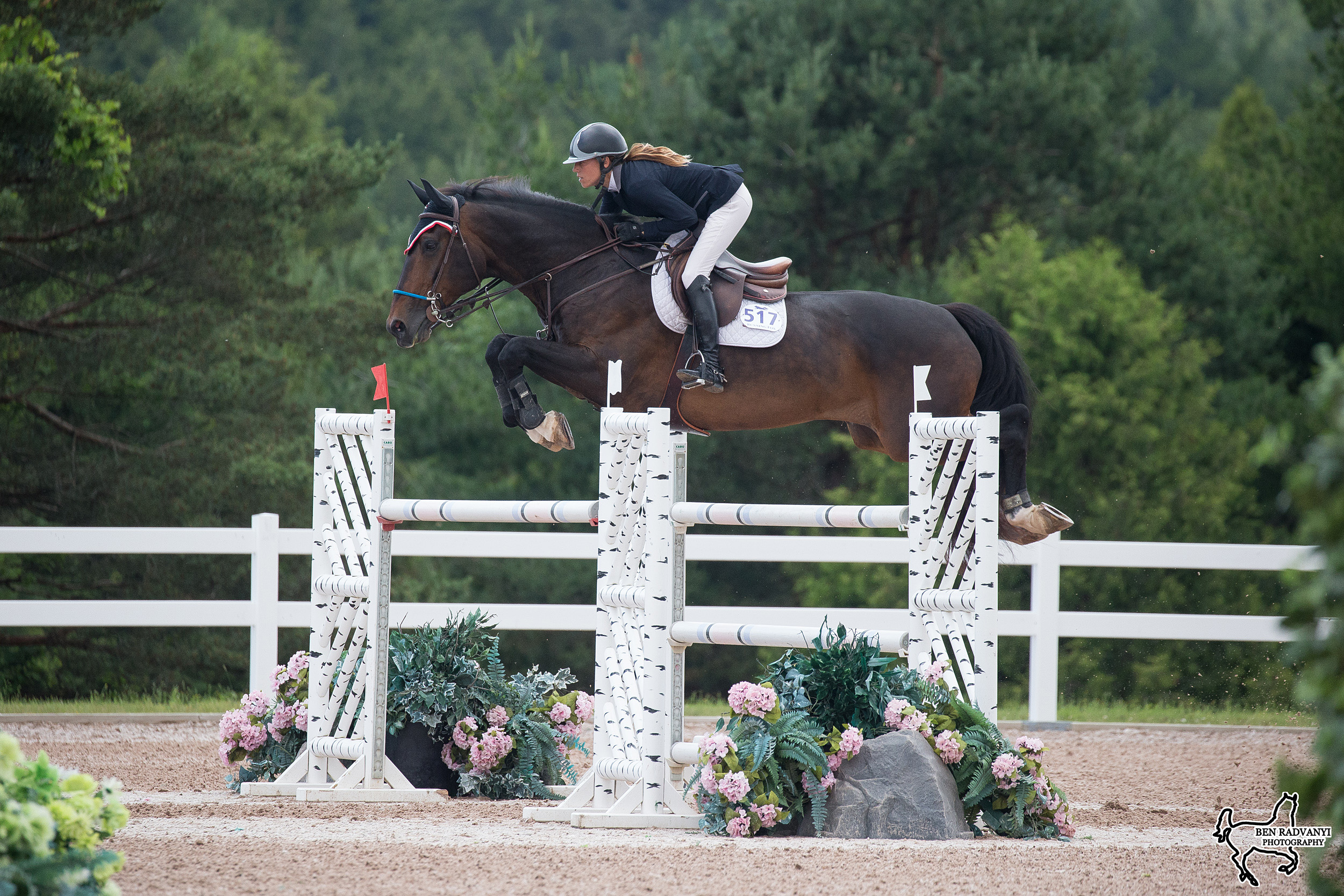 Competitions | caledon-equestrian