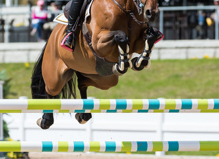 Local Ladies Ruled at the Caledon Equestrian Park