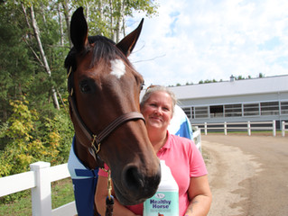 Count Me In wins 2019 Omega Alpha Healthy Horse Award at Caledon Equestrian Park