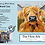 Thumbnail: Highland Cow 2D Felted Picture Kit