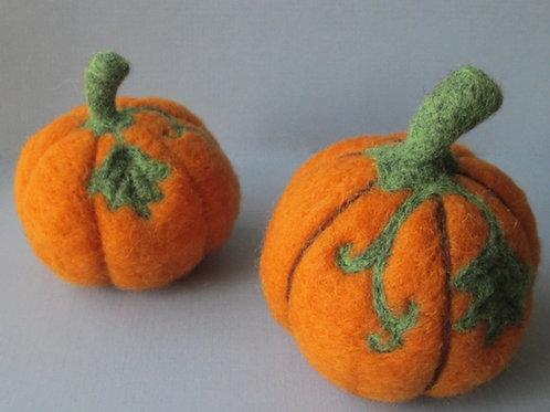 Thanksgiving Pumpkin Kit