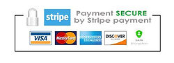 Secure_Payment_Logo_large.jpg