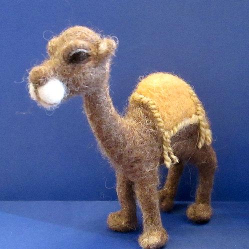 Camel PDF e-Pattern