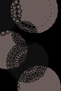ダーディヘアナチュラルレース素材1.png