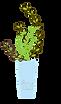 ダーディヘアナチュラルHP花瓶2.png