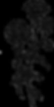 ダーディヘアネイルHPオーガニックカラー料金フラワー画像