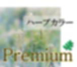 ダーディ艶髪ハーブグレイカラープレミアム3.png