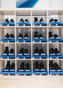 JordanSelect16.jpg