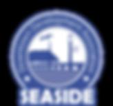 SDDA New Logo Reflex blue.png