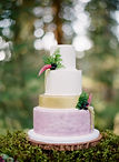 Kaleena Cakes - Kelowna Wedding Cakes - enchanted forest cake