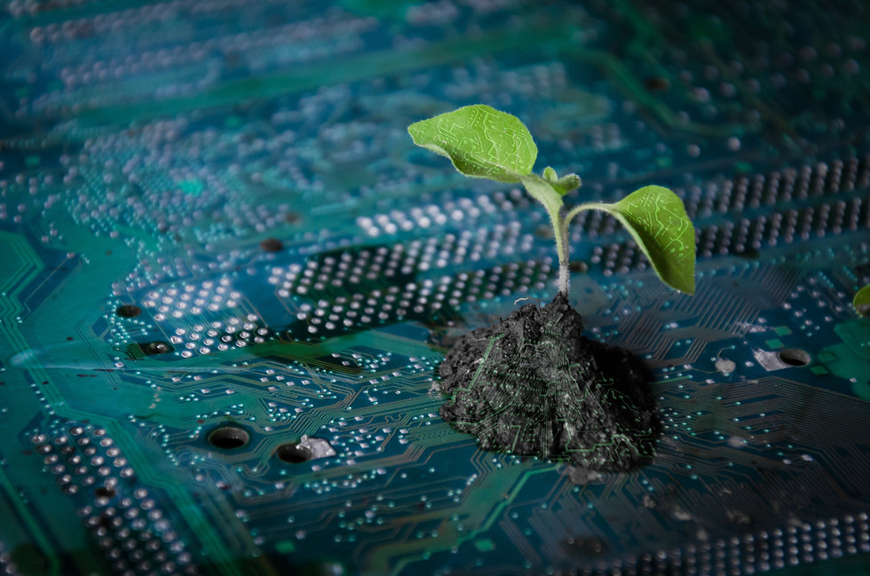 plant green on a circuit board technolog