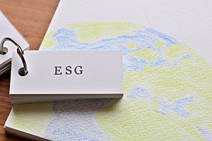 """There is a wordbook with the word """"ESG"""""""