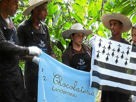 De Bahia à Landerneau, la Chocolaterie met tout son choeur à l'ouvrage.