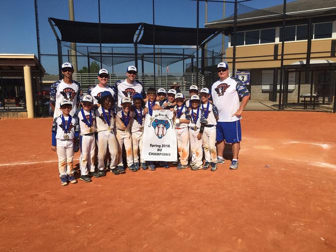 Spring 2016 Cobra 8U Champions