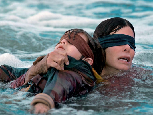 How Bird Box Could Have Been Great