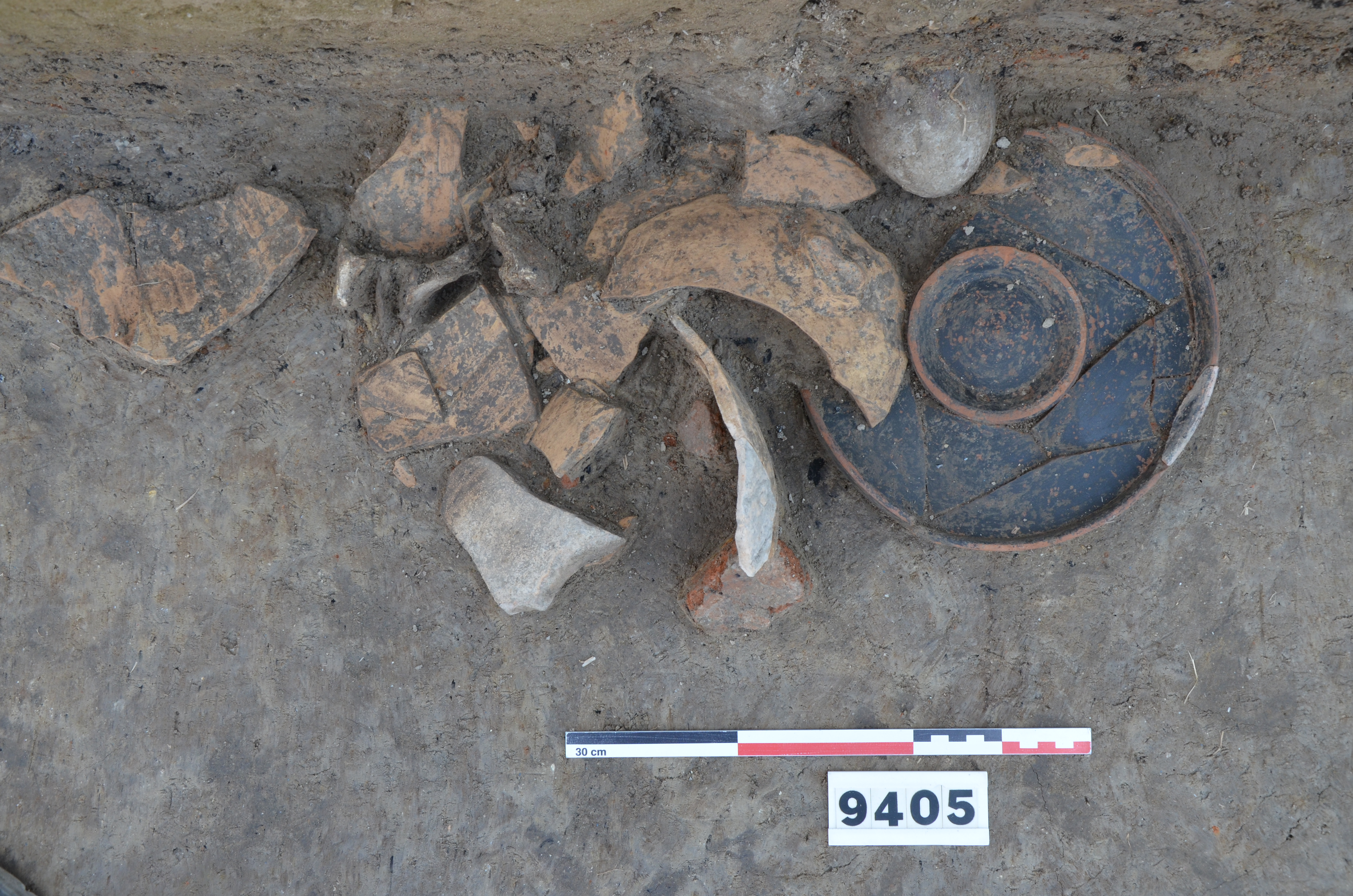 Ceramic debris-Campanian plate