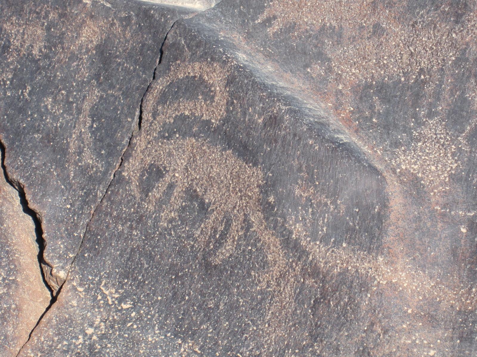 Petroglyph_Ibex_wisad_IMG_3047 2011