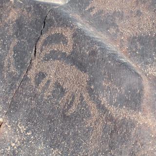 Petroglyph-Ibex-wisad 2011