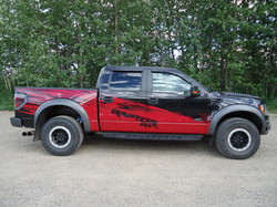 Ford Raptor shelby decals (3)